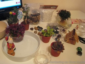 Tabletop Garden Xmas 102