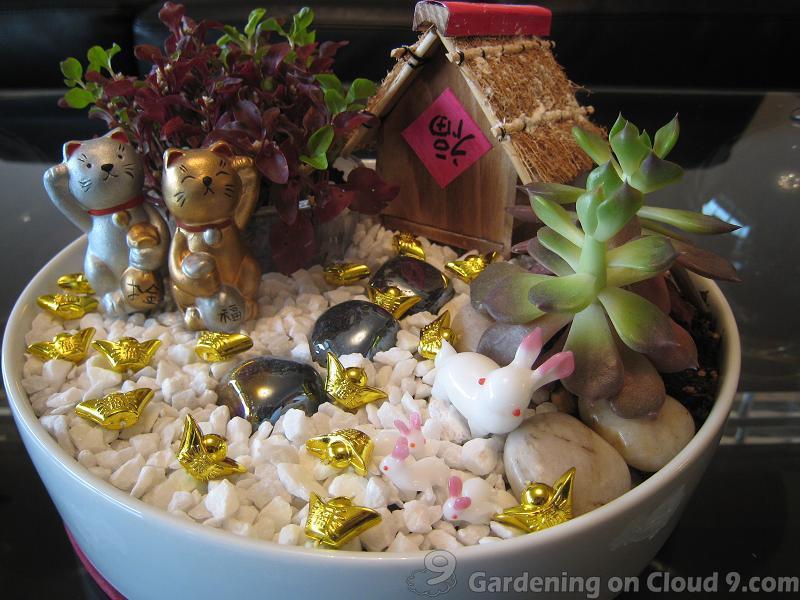 tabletop-garden-cny-05