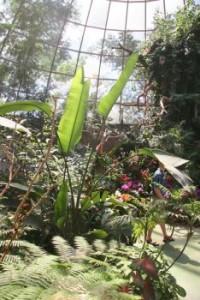 indoor-garden-01