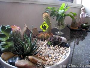 Tabletop Garden - Cactus Garden v2