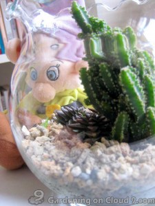 Tabletop Garden - Fishbowl of Cactus