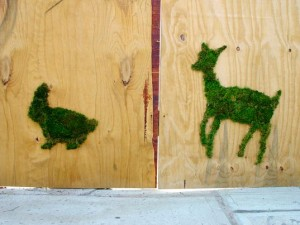 Moss Graffiti by Edina Tokodi