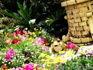 Hong-Kong-Flower-Show